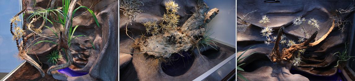 Oset do dekoracji terrarium przykład aranżacji inspiracje