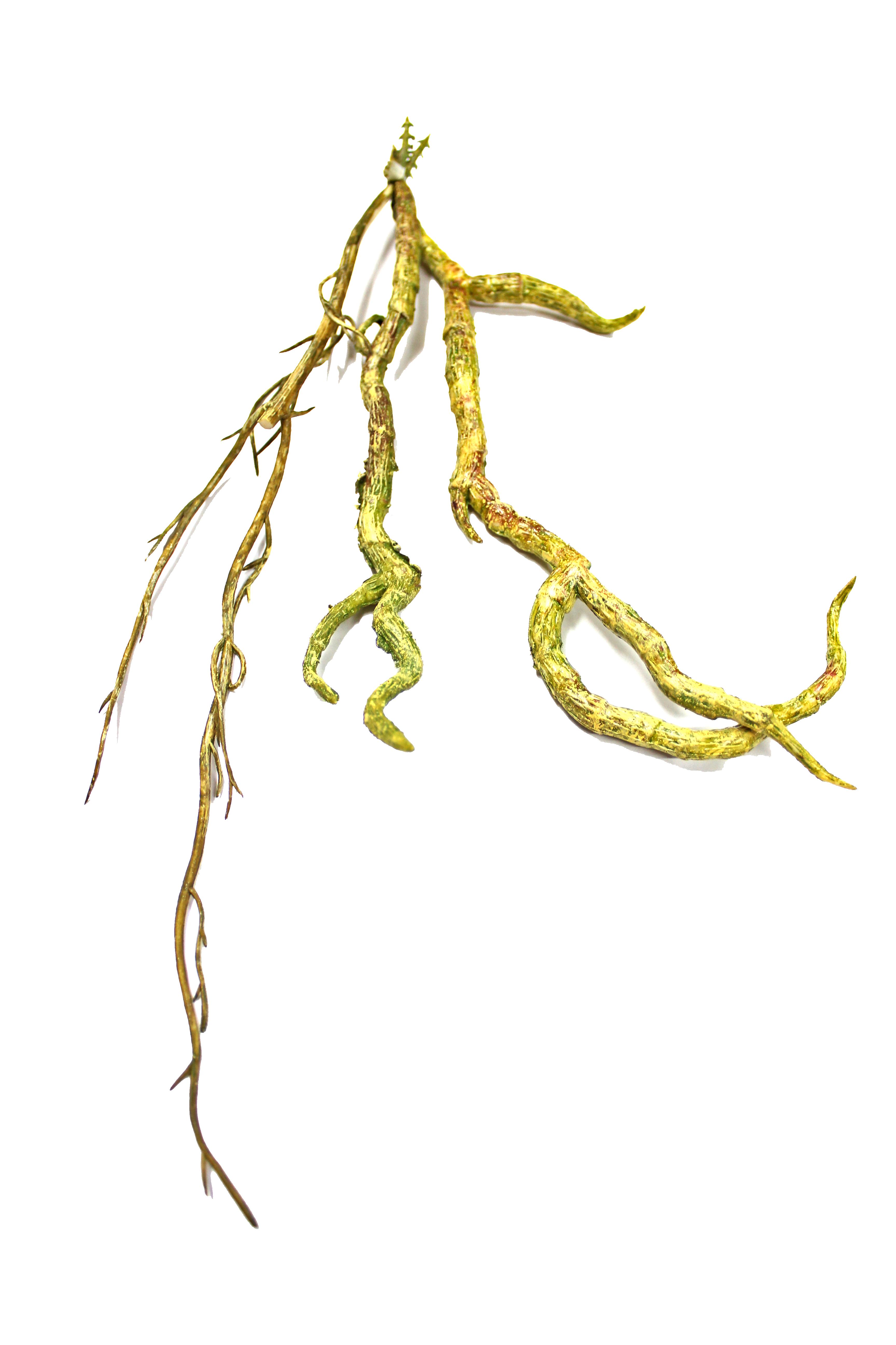 gumowany korzeń orchidei - dodatek do sztucznych roślin i aranżacji terrarium