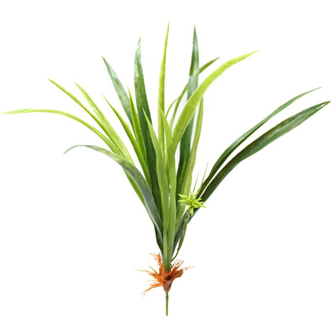 dekoracyjna trawa do dekoracji terrarium
